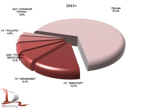 Доли компаний производителей свинины на убой в живом весе в  2013 г., %